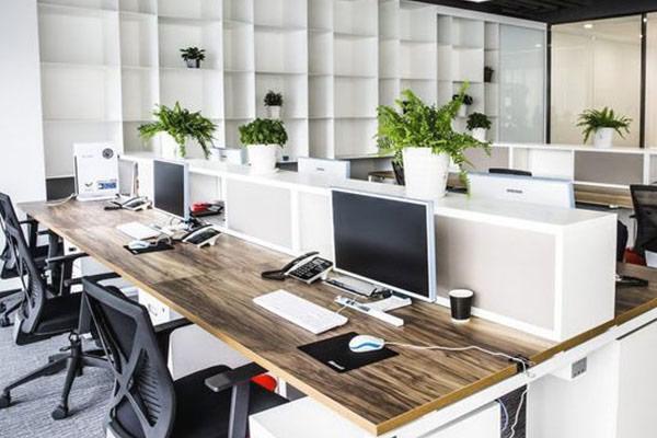 hoàn thiện nhà xây thô thành văn phòng 11