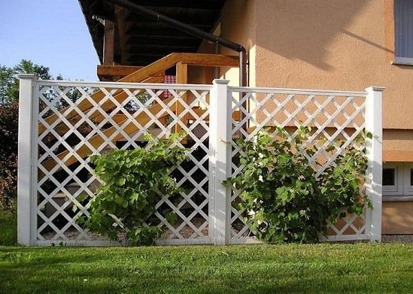 10 mẫu cổng hàng rào sắt hộp đẹp đơn giản 2019 3