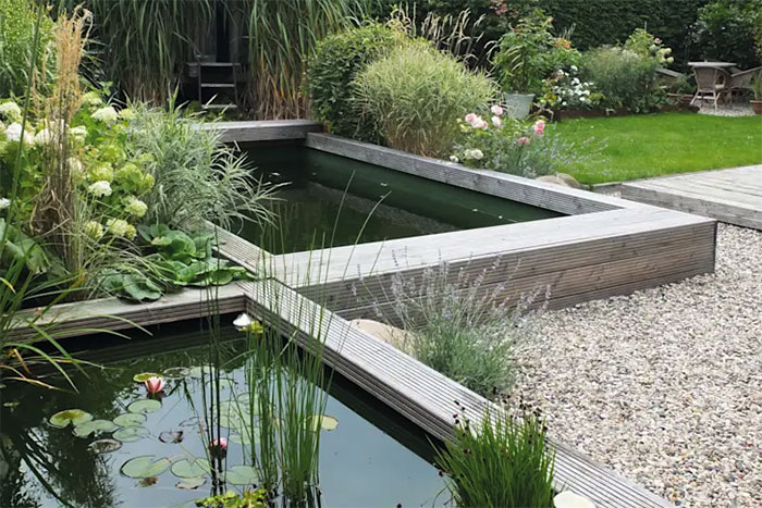 tạo bể cá trong khuân viên sân vườn