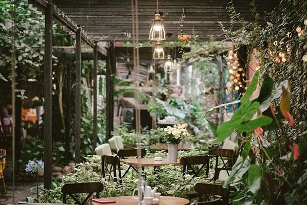mẫu thiết kế cafe sân vườn