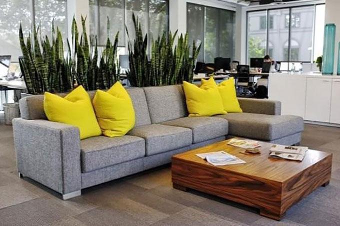 thiết kế nội thất sử dụng cây xanh để bài trí cho không gian
